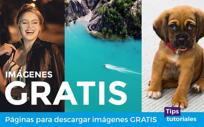 Páginas para descargar imágenes GRATIS