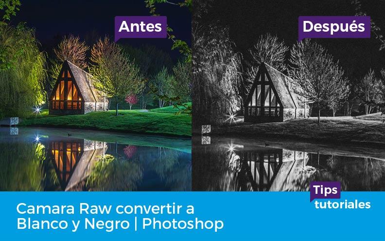 Camara Raw convertir a Blanco y Negro | Photoshop