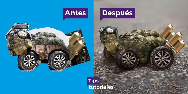 Montaje tortuga de carreras rápida Photoshop
